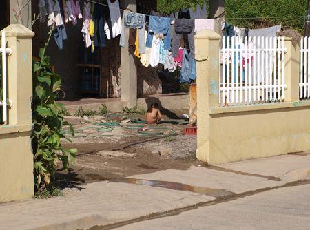 Roatan-front-yard